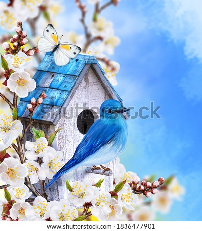 Blue bird titmouse sitting on a branch of blossoming cherry, birdhouse, white spring flowers, butterfly, blurred background, soft focus, Easter holiday sunny day, mixed media, 3d rendering Stockfoto ©