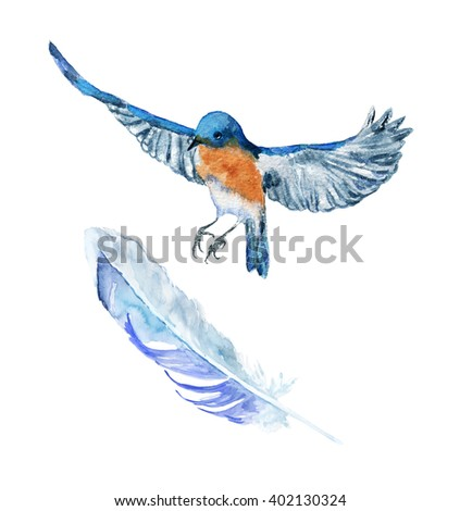 blue bird.  Watercolor  drawing. Can be used for design, printing, postcards.
