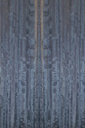 blue black Eucalyptus wood veneer board strippes grain pattern
