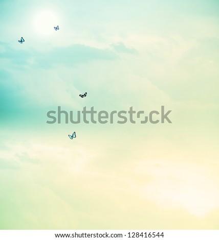 Blue butterflies on the cloudscape