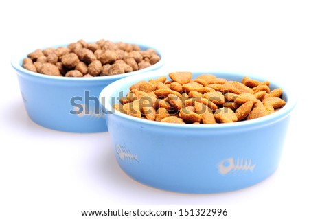 Blue ceramic dogs bowl. Dry dog food in bowl isolated on white background. Dry dog food isolated on white background
