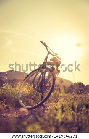 Blue classic bicycle is standing on a green field, sundown scenery #1419346271