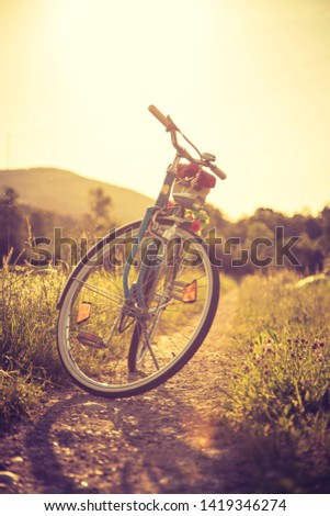 Blue classic bicycle is standing on a green field, sundown scenery #1419346274