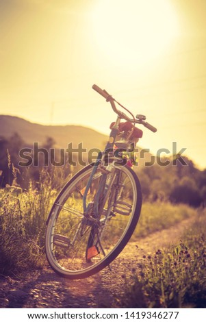 Blue classic bicycle is standing on a green field, sundown scenery #1419346277
