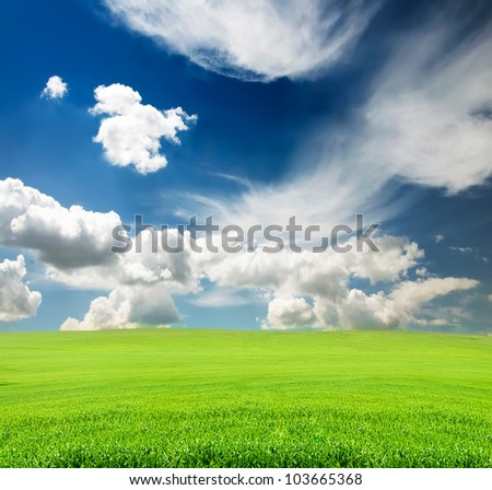 blue cloudy sky with green grass in the field in summer