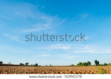 Blue cloudy sky with land of tree and meadow field. Plain landscape in the summer morning.