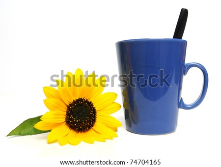 Blue colored cup of coffee with sunflower on white background