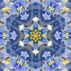 Blue Concentric Flower Center Macro Close-up. Mandala Kaleidoscopic design
