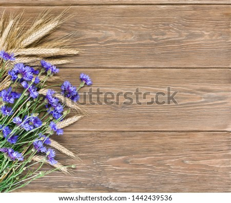Blue cornflowers with wheat ears on wooden background. Copy space. #1442439536