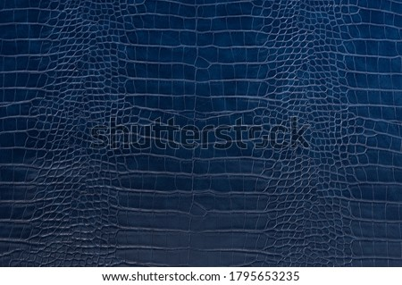 Blue crocodile leather skin background and texture Stock fotó ©