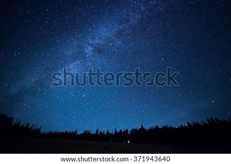 Stock Photo Blue dark night sky with many stars above field of trees. Yellowstone park. Milkyway cosmos background