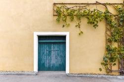 Blue door to wine cellar with grapes – house facade