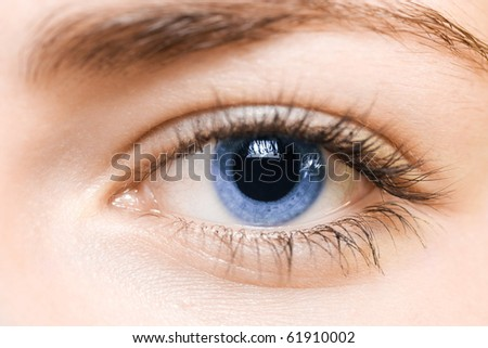 blue eye - stock photo