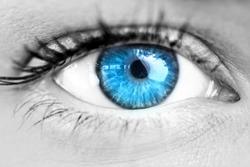 Blue eye against white background with vignette