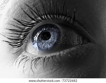 Blue eye extreme close-up.
