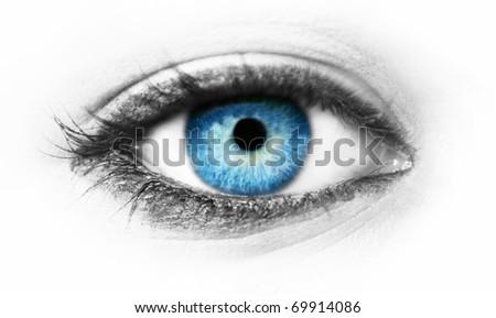 Blue eye macro shot