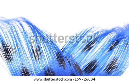 Blue feathers background. Isolated. On a white background