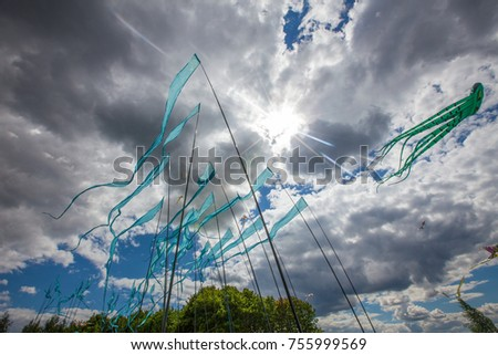 Blue flags in a cloudy windy day.