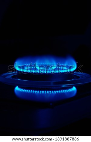 Blue flame of gas stove Stock fotó ©