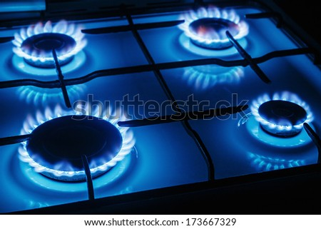 Blue flames of gas burning from a kitchen gas stove Focus the front edge of the hotplate