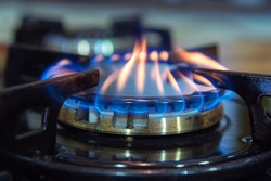 Blue flames on gas stove burner.