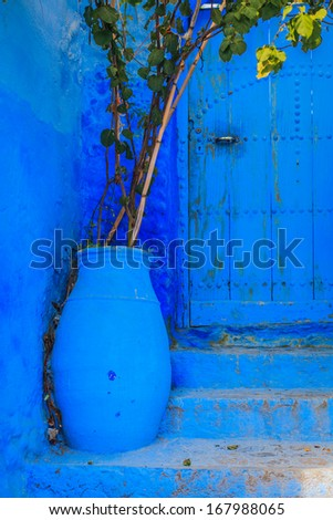 Blue flower pot located in front of blue door