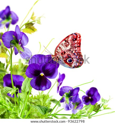 Blue flowers violet with red butterfly on white  background