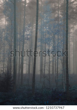 blue forrest in fantasy style concept #1210737967