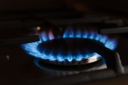 blue gas flame close up on the gas stove