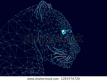 Blue Glowing Leopard Riding Night Sky Star. Creative decoration magical backdrop glowing cosmos space myth moonlight fantasy background. Geometric glowing lines.Leopard face.Illustration