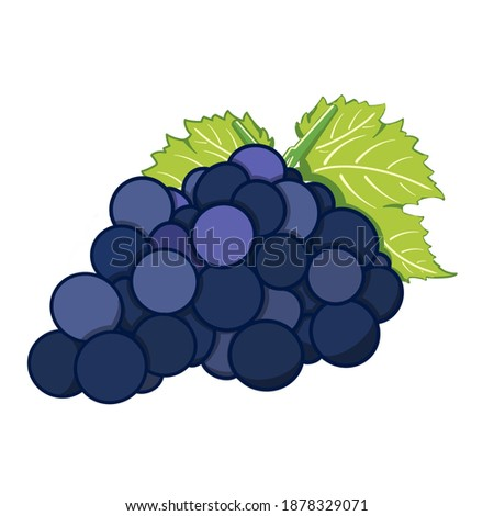 Blue grapes pastel and white background Stok fotoğraf ©