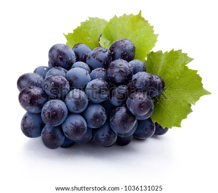 Blue grapes wet with leaves isolated on white background #1036131025