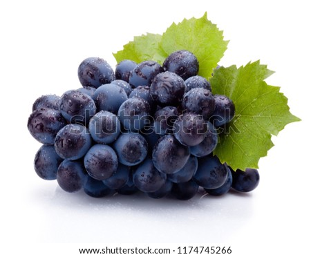 Blue grapes wet with leaves isolated on white background #1174745266