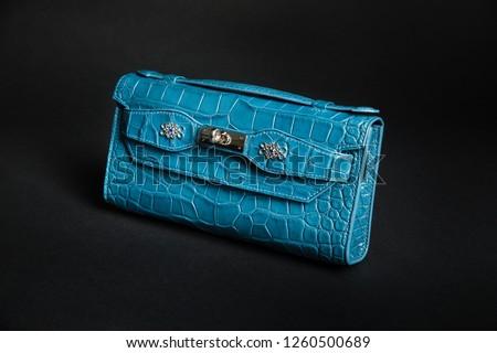 3e58eaa7c Elegant handbag isolated on white background. Python. Snake Images ...
