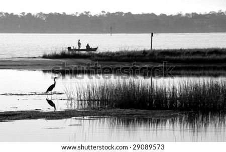 Blue heron fishing in bay with fishermen in distance