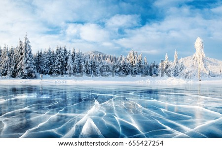 Blue ice and cracks on the surface of the ice. Frozen lake under a blue sky in the winter. The hills of pines. Winter. Carpathian, Ukraine, Europe #655427254