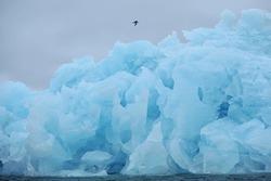 Blue icebergs near the coast of Svalbard archipelago.