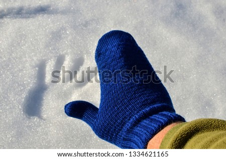 Blue knitted wool mitten on a background of white snow in sunny weather with a handprint. Hello winter or summer. The concept of the onset of the new season #1334621165