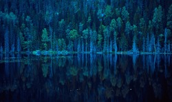 Blue lake shore with pine trees. Reflections on the surface of super clean water. Nothern landscape, Karelia