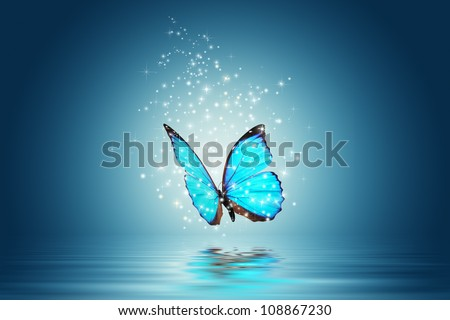 Stock Photo Blue Magic butterfly over water