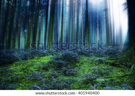 Blue magic fairytale forest with mysterious lights