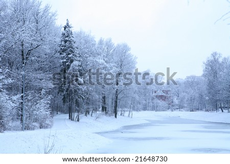 blue morning winter landscape with pond and house