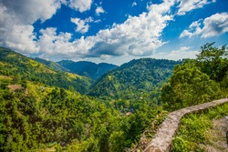 Blue mountains of Jamaica coffee growth place hills