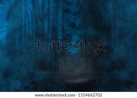 blue mysterious fog covers night pine forest with tall trees concept of wilderness and wilderness #1314662702