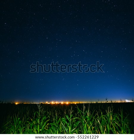 Blue Night Starry Sky Above Green Cornfield And Yellow City Lights On Background. Night View Of Natural Glowing Stars #552261229