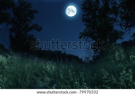 Blue night with moon