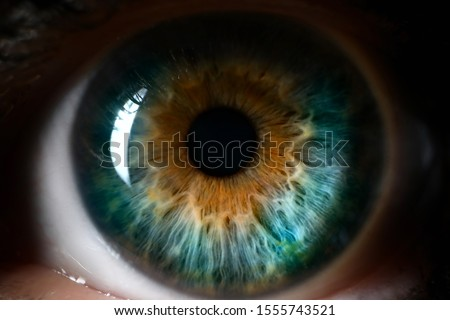 Blue orange human eye close up background. Color perception blindness concept stock photo