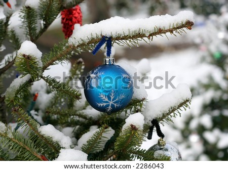 blue ornament hanging on tree outside