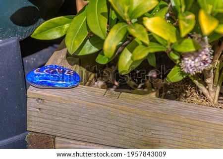 blue painted stone on a wooden planter. The kei tof is ready to be found Stockfoto ©