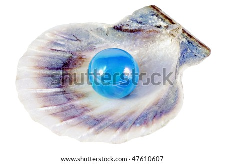 blue pearl and shell isolated on white background